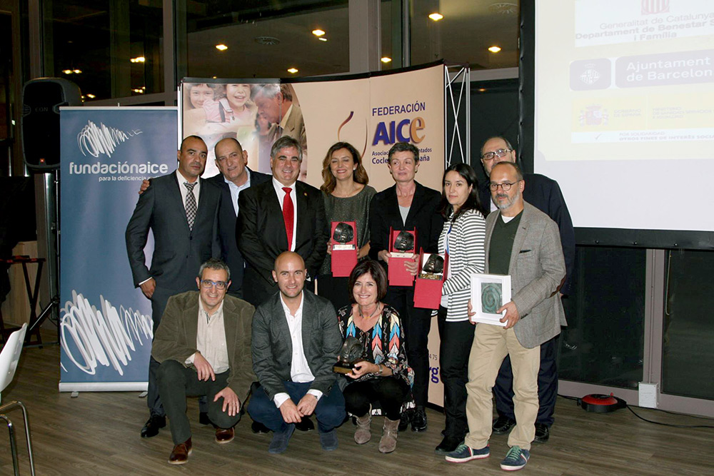 Gala XIX Premios AICE 2016